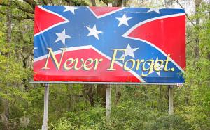 Confederate Flag of White America