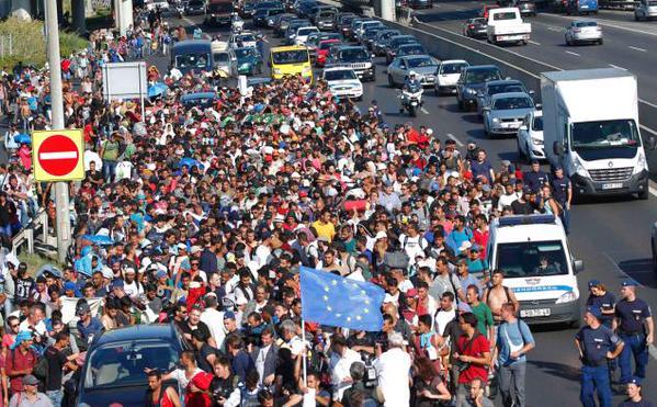 Syrian Migrants to Sydney