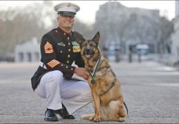 US Marine Corp Dog Lucca with US Marine Gunnery Sergeant Christopher Willingham
