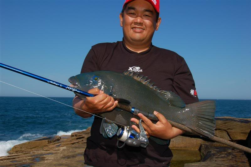 Asian Rock Fishing Fool