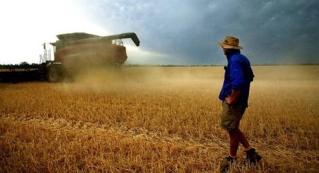Australia the Food Bowl of Asia