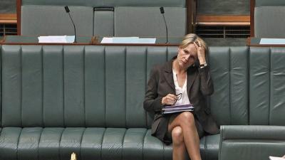 Tanya Plibersek in speedos in Parliament