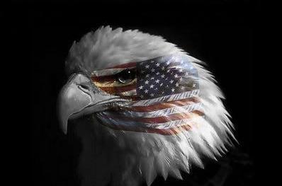 White American Pride