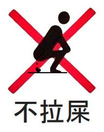 Chinese No Shit