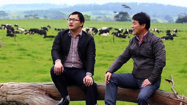 Chinese buy up Phillip Island