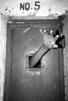 Labor's Asylum Seeker Policy