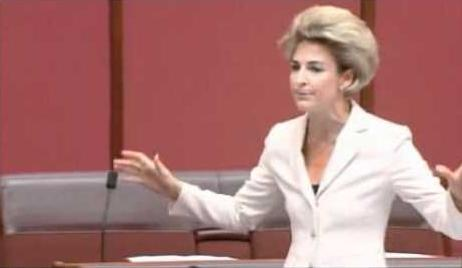 Michaelia Cash Employment Minister