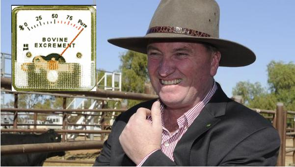 Barnaby Joyce new Nationals Leader