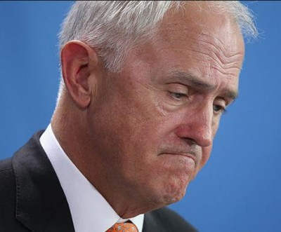 Turnbull Bull failed