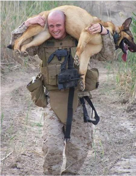 Lucca carried on training by Willingham