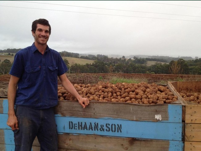 WA potato growers livelihoods threated by deregulation