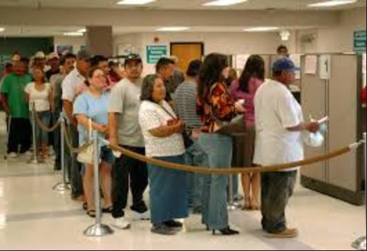 Ethnics in Centrelink dole queue
