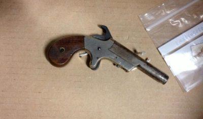 Thomas Mair type of gun used
